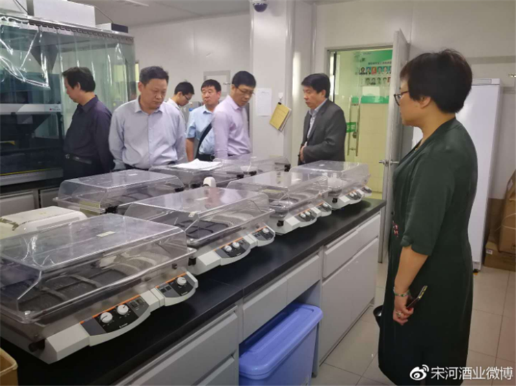 品质为根 宋河酒业朱景升总裁带队赴江南大学开展交流活动